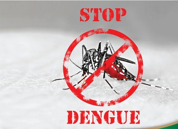 Know and Fight Dengue